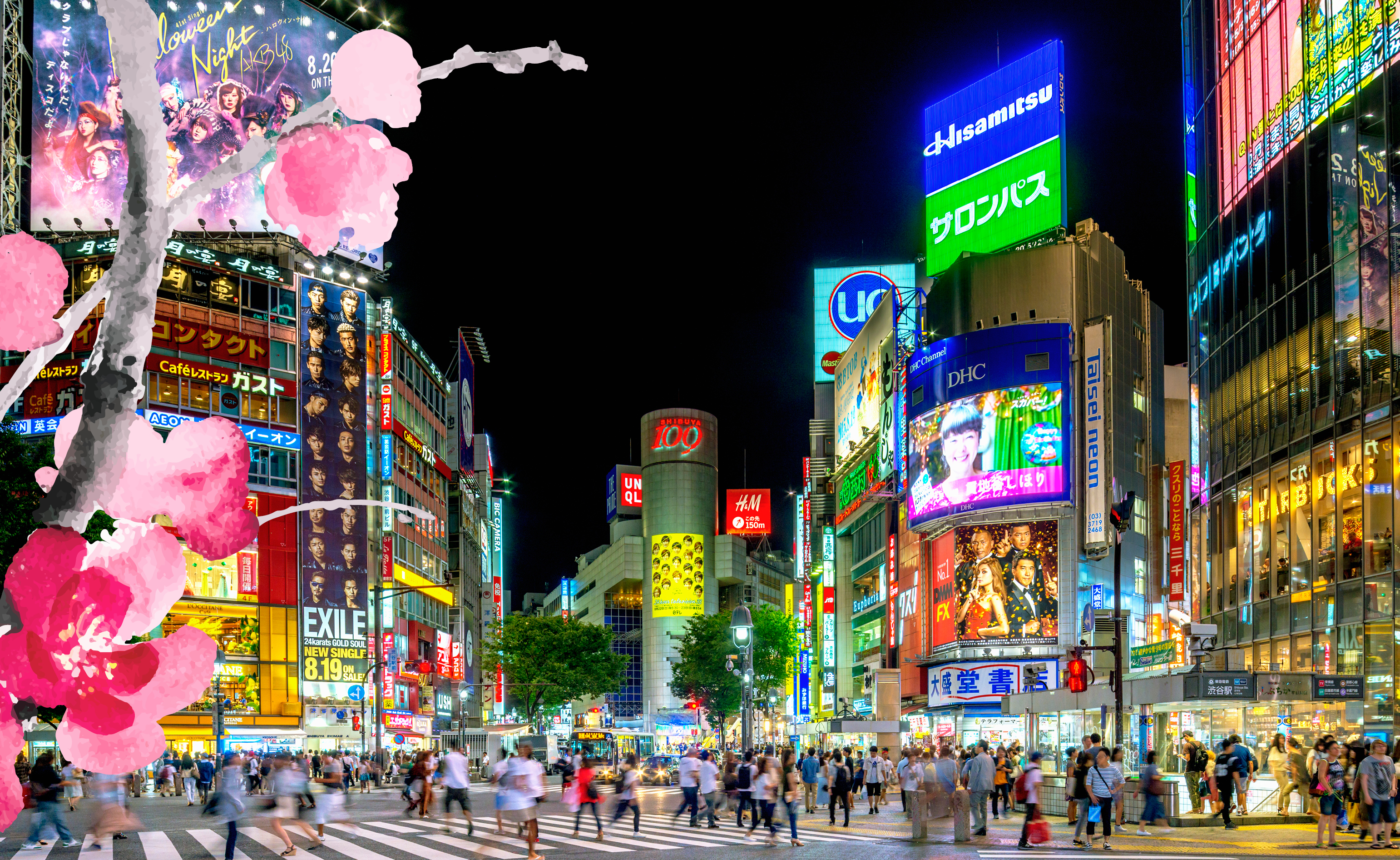 Two Japanese Studies Scholarships on Offer